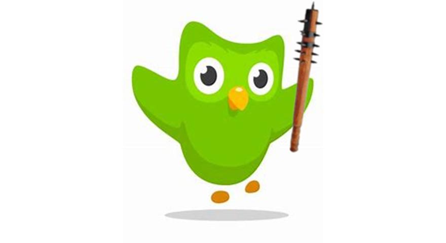 Duolingo Owl Memes Stayhipp