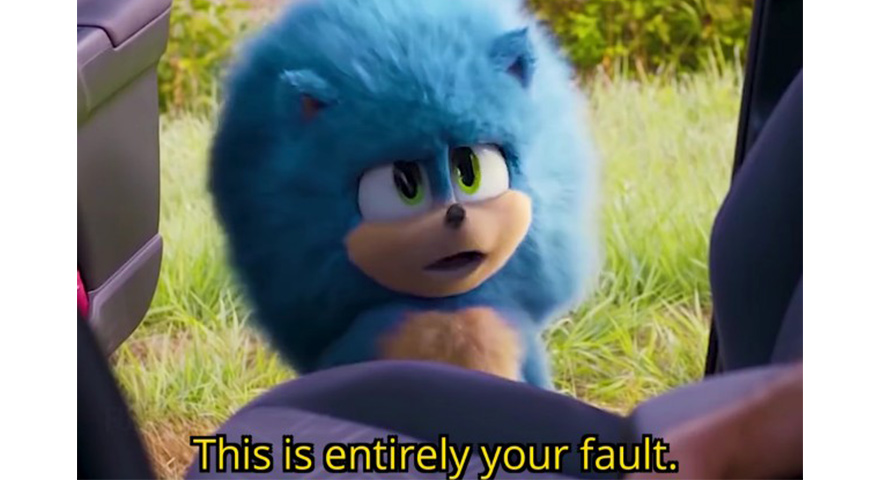 This Is Entirely Your Fault Sonic Memes Feat. Fluffy Sonic