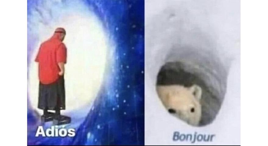Adios Wormhole / Bonjour Polar Bear Memes