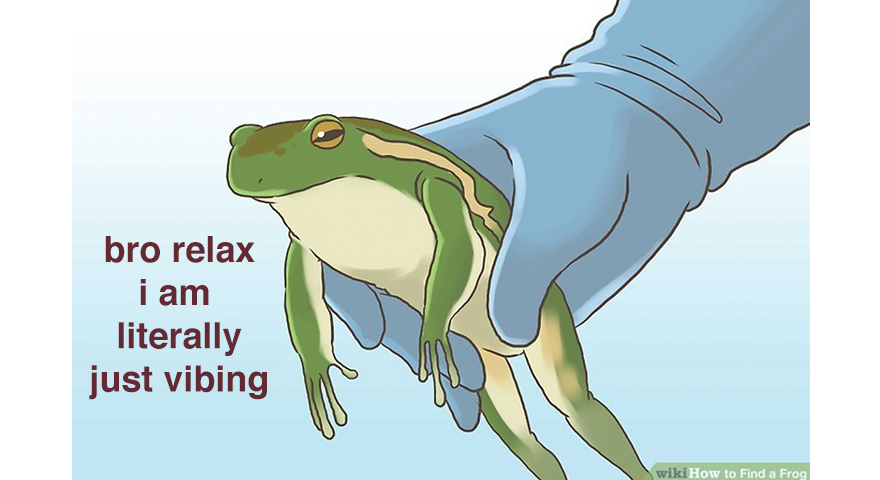 'Bro Relax I Am Literally Just Vibing' Frog Memes