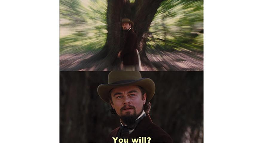 Leonardo DiCaprio 'You Will' Memes