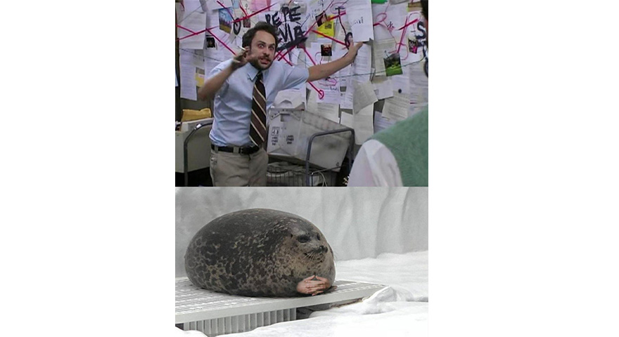 Charlie Kelly Explaining To A Seal Memes