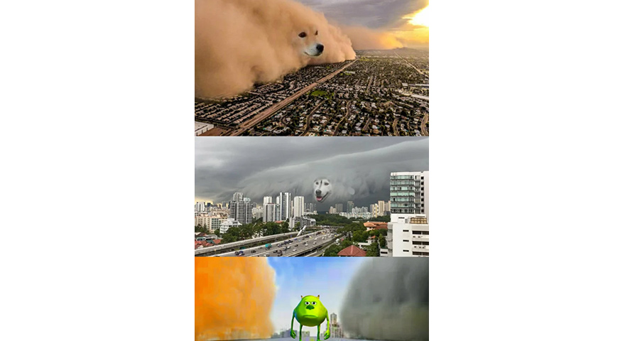 Dog Dust Clouds vs. Mike Wazowski Memes